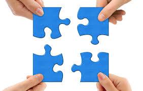 membership organisations puzzle